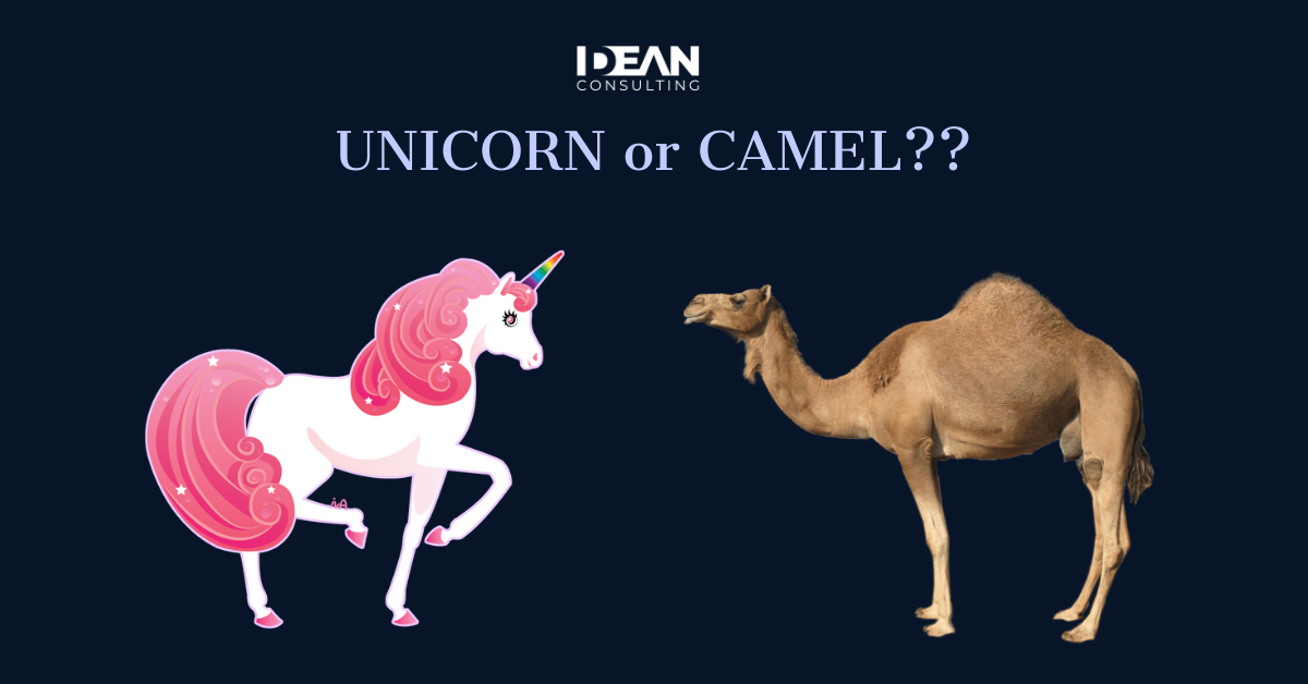 Unicorn Vs Camel